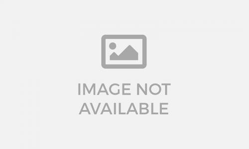Feedback - Review về kem tổ yến sào tắm dưỡng trắng da toàn thân Be-Y