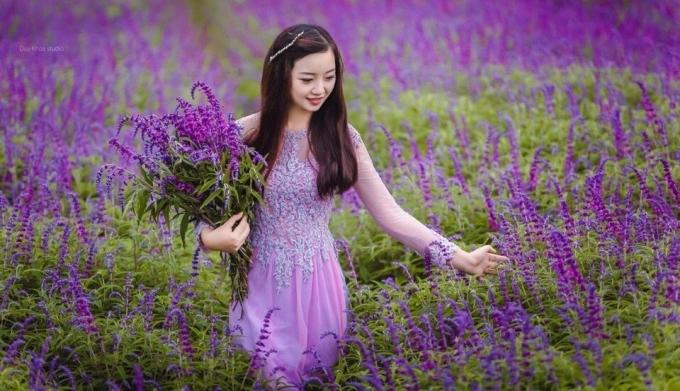 Hoa oải hương giúp làn da sáng
